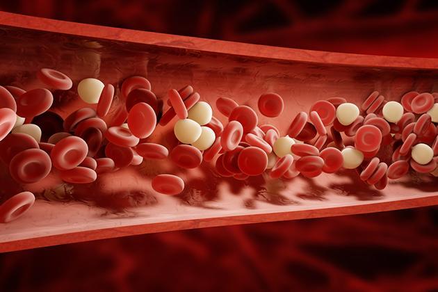 Piastrine alte e basse nel sangue